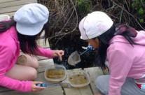 MacSkimming Outdoor Education Centre